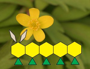 caterpillar tangram-001